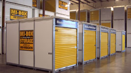 Lemont Self Storage Moving Containers